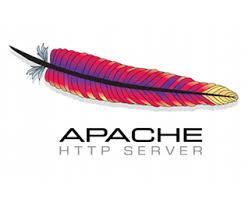Apache中启用和配置expires