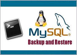 SSH快速备份/还原MySQL数据库